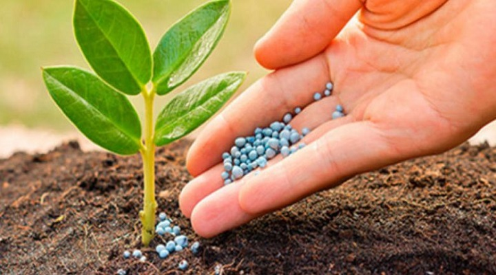 Global Agricultural Micronutrients Market-a7f889a7