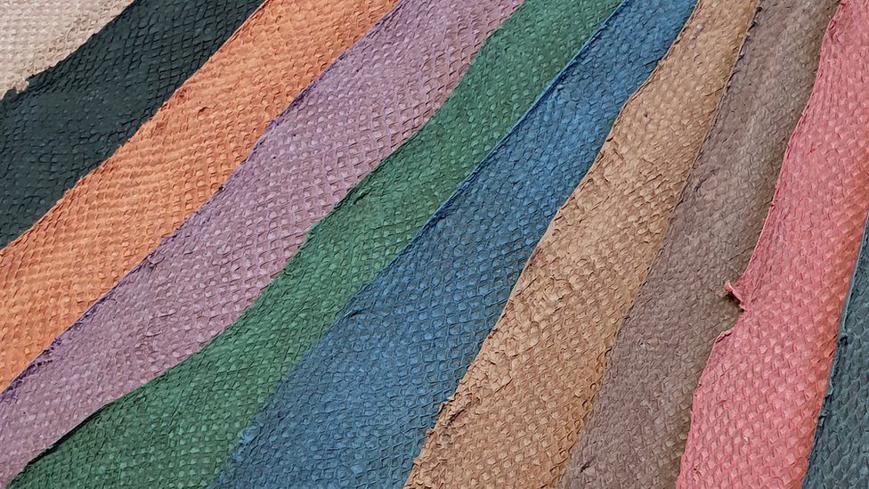 Global Fish Leather Market-8a5bd246