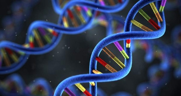 Global Genomics Market-f02f43fa