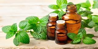 Peppermint Oils Market-9ca6fa57